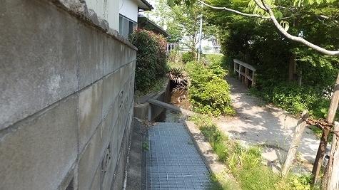 DSCF0128.jpg